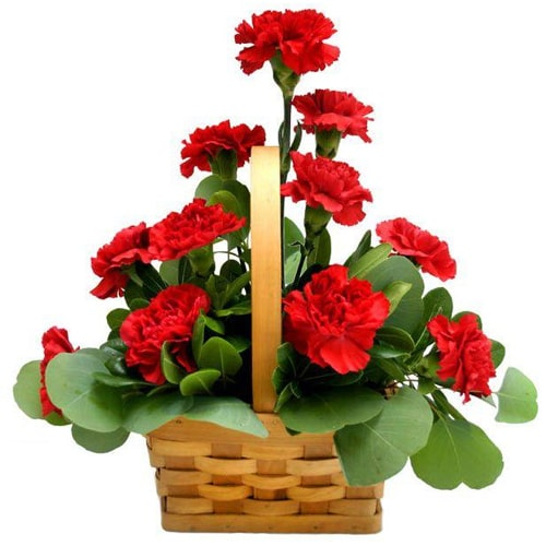 Fresh Red Carnations  Basket to Japan