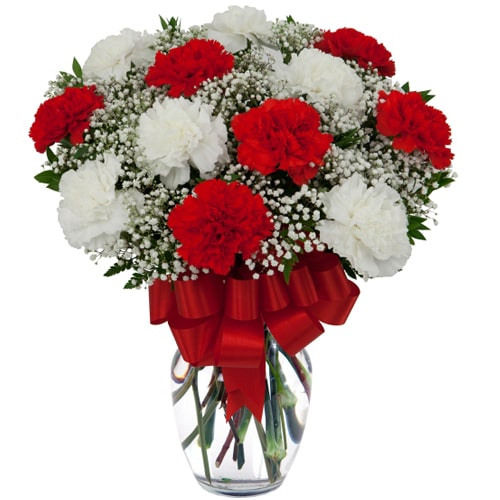 Seasonal White and Red Carnations