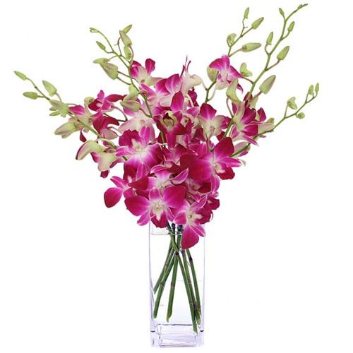 Fresh Mixed Orchid  to Japan